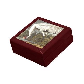 La grúa que chilla de Audubon Cajas De Joyas