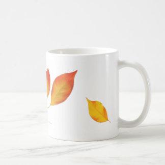 La haya del otoño sale de la taza