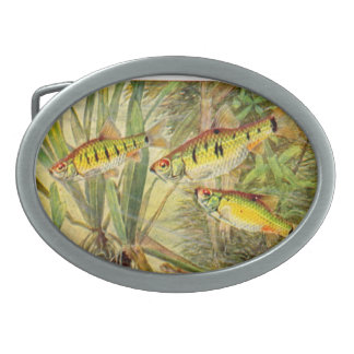 La hebilla del cinturón del pescador hebillas de cinturón ovales