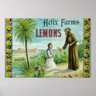 La hélice cultiva el limón LabelSan Diego, CA Poster