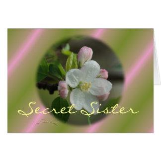 La hermana secreta Apple florece personalizar de Tarjeta De Felicitación