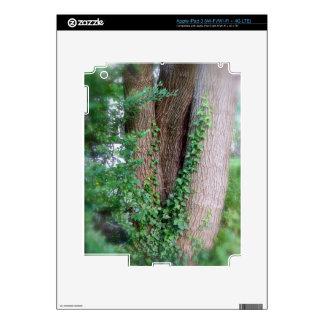La hiedra envolvió la caja del iPad 3 del árbol iPad 3 Skins