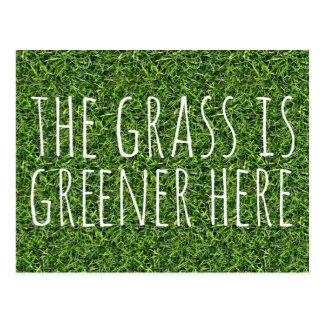 La hierba es más verde aquí tarjetas postales