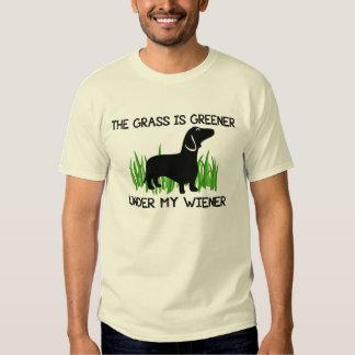 La hierba es más verde debajo de mi salchicha de polera