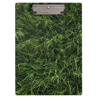 La hierba es siempre un tablero más verde