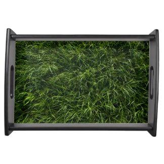 La hierba es siempre una bandeja más verde de la