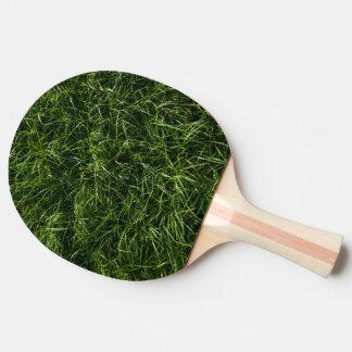 La hierba es siempre una paleta más verde del pala de ping pong
