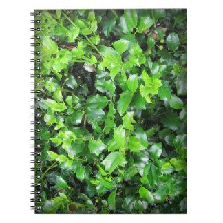 La hierba natural sale del cuaderno de la foto