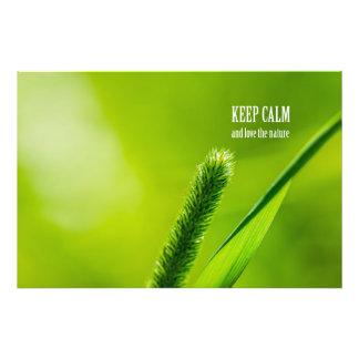 La hierba verde y Sun guardan calma y aman la Impresión Fotográfica
