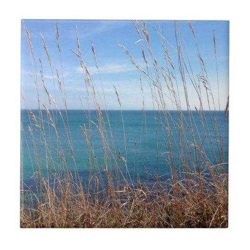 La hierba y el mar hermosos azulejo cuadrado pequeño