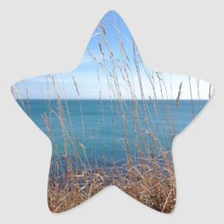 La hierba y el mar hermosos calcomania forma de estrella personalizadas