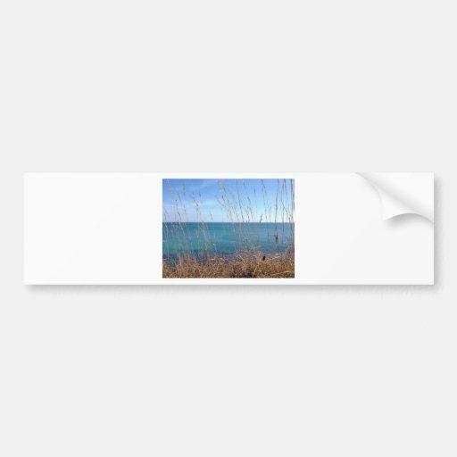 La hierba y el mar hermosos pegatina de parachoque