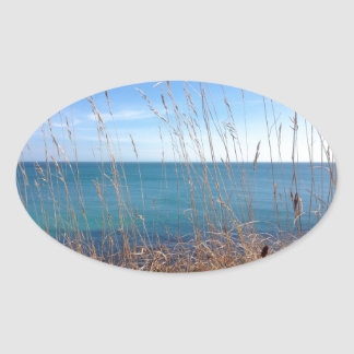 La hierba y el mar hermosos pegatina ovalada