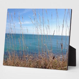 La hierba y el mar hermosos placas de madera
