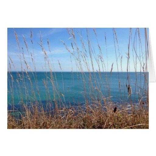 La hierba y el mar hermosos tarjeta de felicitación