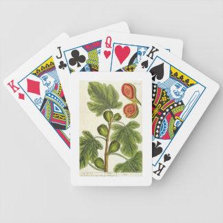 """La higuera, platea 125 """"de un herbario curioso"""", p baraja de cartas"""