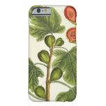 """La higuera, platea 125 """"de un herbario curioso"""", p funda de iPhone 6 slim"""