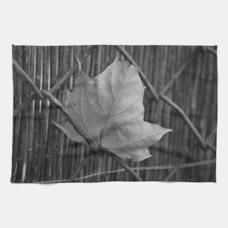 La hoja de arce seca - toalla