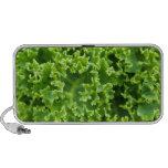 La hoja de la planta verde sale las vides de desti iPod altavoz