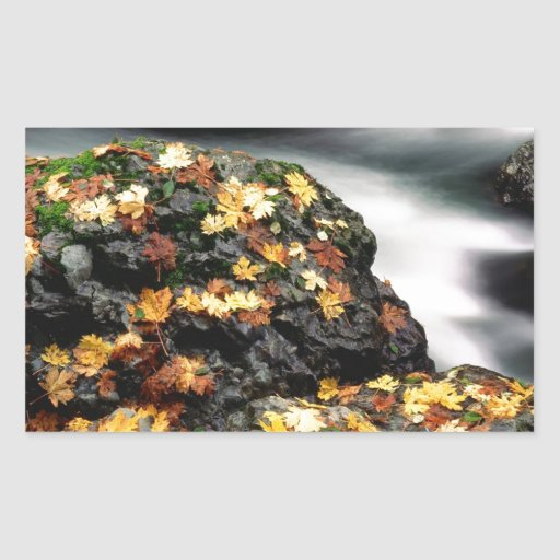 La hoja del otoño cubrió el río Oregon de los Pegatina Rectangular