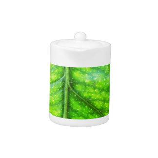 la hoja verde natural sale tierra de los árboles d