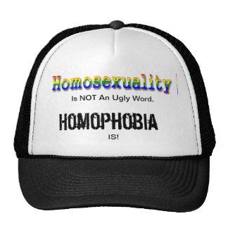 La homosexualidad no es una palabra fea gorro