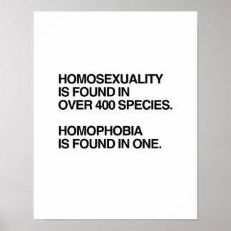 LA HOMOSEXUALIDAD SE ENCUENTRA EN 400 ESPECIES POSTERS