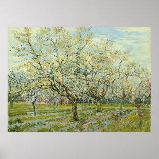 La huerta blanca de Vincent van Gogh Póster