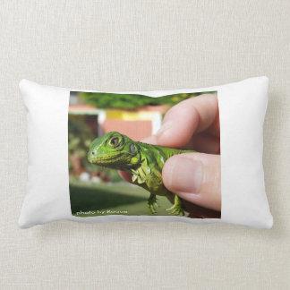 la iguana en el cojin