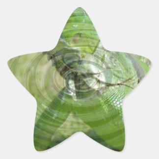 La iguana verde calcomanías forma de estrella personalizadas