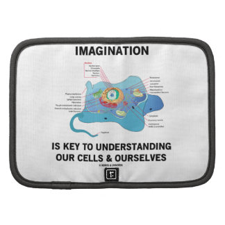 La imaginación es dominante a entender nuestras cé planificadores