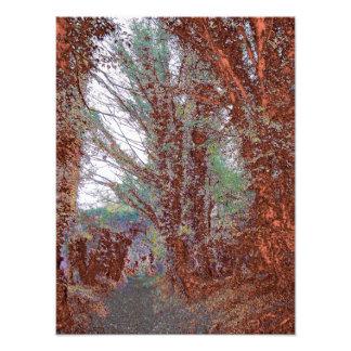 La impresión de la foto de color de la trayectoria