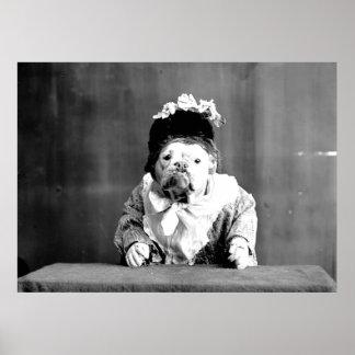 La impresión de la lona del dogo de la reina póster