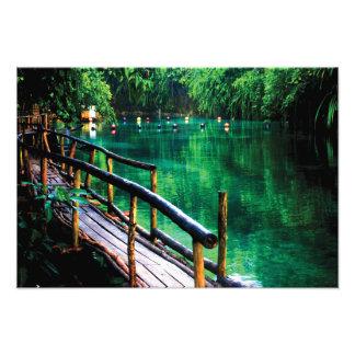 La impresión encantada de la foto del río cojinete