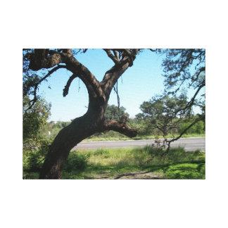La impresión envuelta árbol de la lona del palo impresión en lona estirada