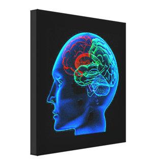 La impresión estirada de la lona del cerebro