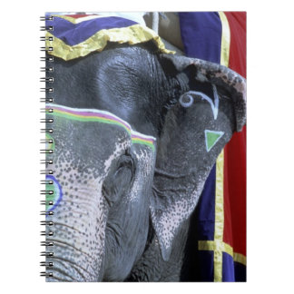 La India, Rajasthán, Jaipur. Fuerte ambarino Libro De Apuntes