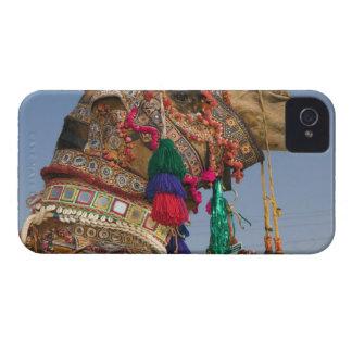 La INDIA, Rajasthán, Pushkar: CAMELLO DE PUSHKAR J iPhone 4 Cobertura