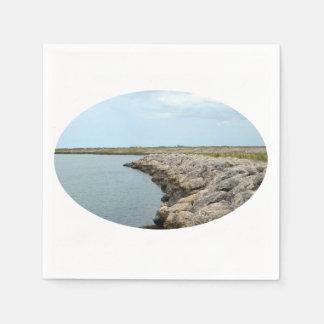 la isla curvada de la barrera de la roca en la servilleta desechable