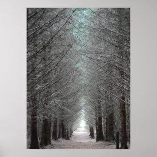 La isla de reflexiona sobre el bosque póster