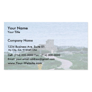 La Isla Mujeres Mexico Ruins credit Sean Varner Double-Sided Standard Business Cards (Pack Of 100)