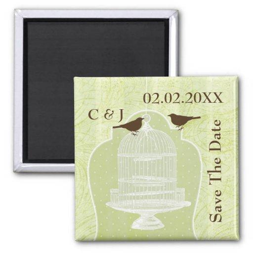 la jaula de pájaros verde, pájaros del amor ahorra imán cuadrado