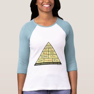 La jerarquía de Maslow de las necesidades de la Camisetas