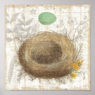 La jerarquía de un pájaro con un huevo verde póster