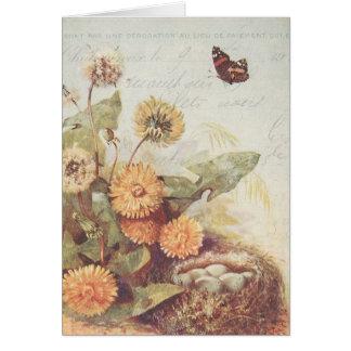 La jerarquía del pájaro de la mariposa de los tarjeta pequeña