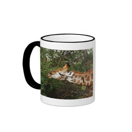 La jirafa hace calendarios las tazas y las tazas