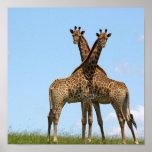 La jirafa hermana el poster