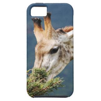La jirafa que come alguno se va iPhone 5 Case-Mate protector