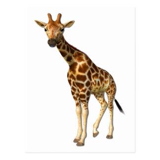 La jirafa postal