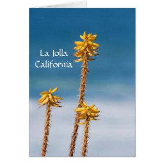 La Jolla Agave and Ocean Card